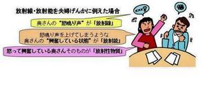 aJAEA(2)[1].jpg